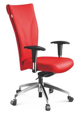 Cadeira Presidente Absinto com Braços